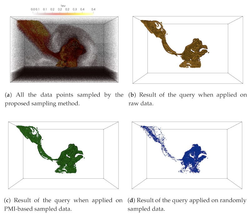 Multivariate Pointwise Information-Driven Data Sampling and Visualization